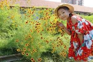 河南10岁小姑娘把《欢乐颂》唱火了资讯生活